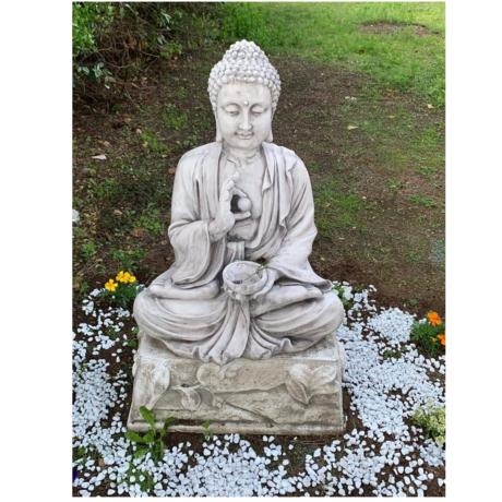 buddha 1x