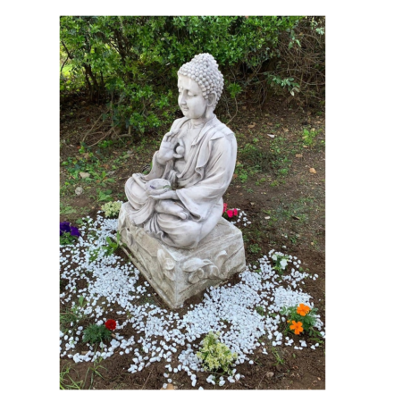 buddha 3 x